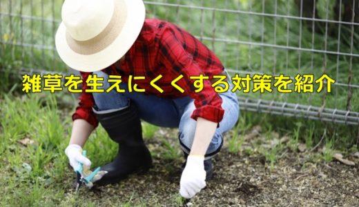 雑草を生えにくくする対策を紹介、場所や雑草の種類で変えるのがポイント