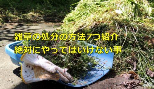 草むしり後の雑草の処分の方法を紹介、絶対やってはいけないこと